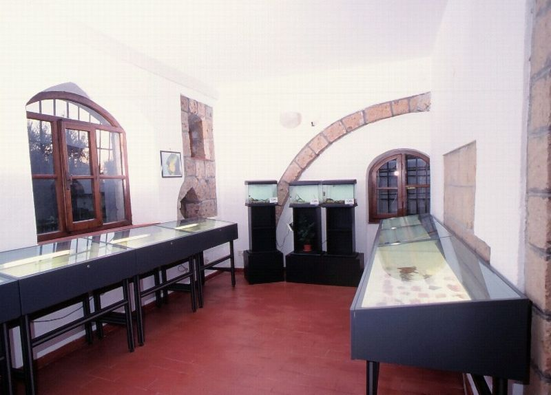 Old Museum in Sovana, Italy