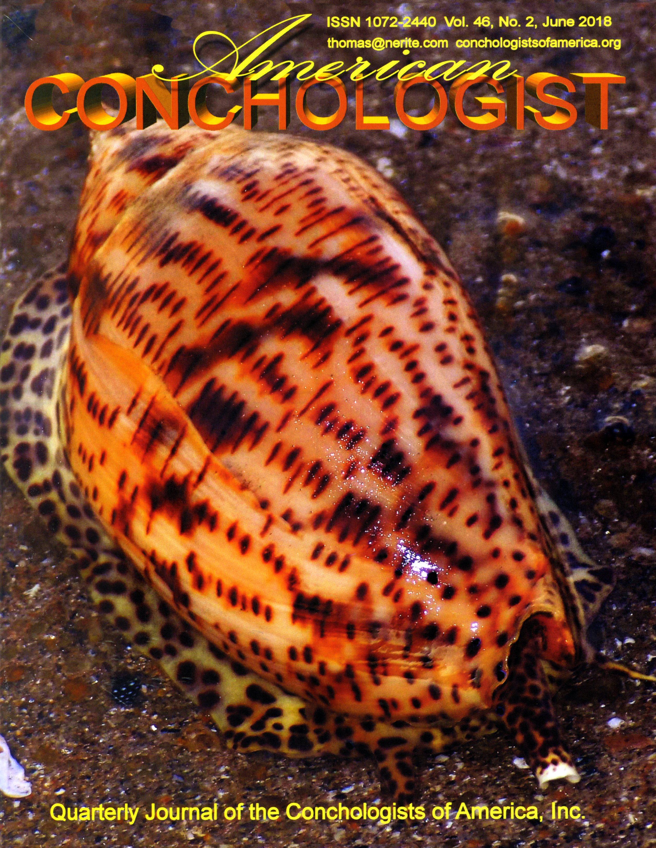 CONCHOLOGIST OF AMERICA 4622018